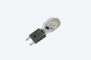 Socket and Bulb Assembly